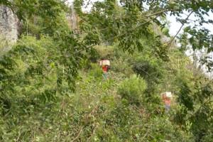 A. TESSIOT Mayotte : Transporter des éléments d'une installation GSM - Photo 1