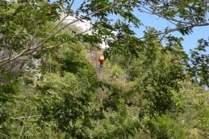 A. TESSIOT Mayotte : Transporter des éléments d'une installation GSM - Photo 3